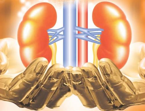 O prevenciji i liječenju najčešćih bolesti bubrega jednim klikom